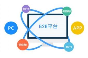 遠豐電商丨B2B電商系統有哪些開發技術?