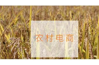 远丰电商 | 搭建农村电商系统平台怎么盈利?