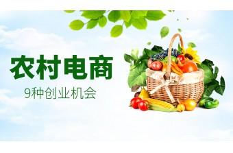 远丰软件|农村电商的9种创业机会!