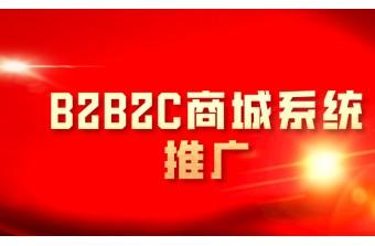 B2B2C商城系统推广怎么做